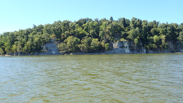 Cliff-Like River Banks on the Cumberland River, KY